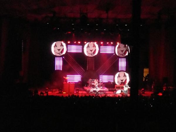 Blink-182 /rabbit!